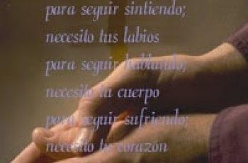 Quiero decirte lo mucho que te necesito - Cartas de amor y pasión
