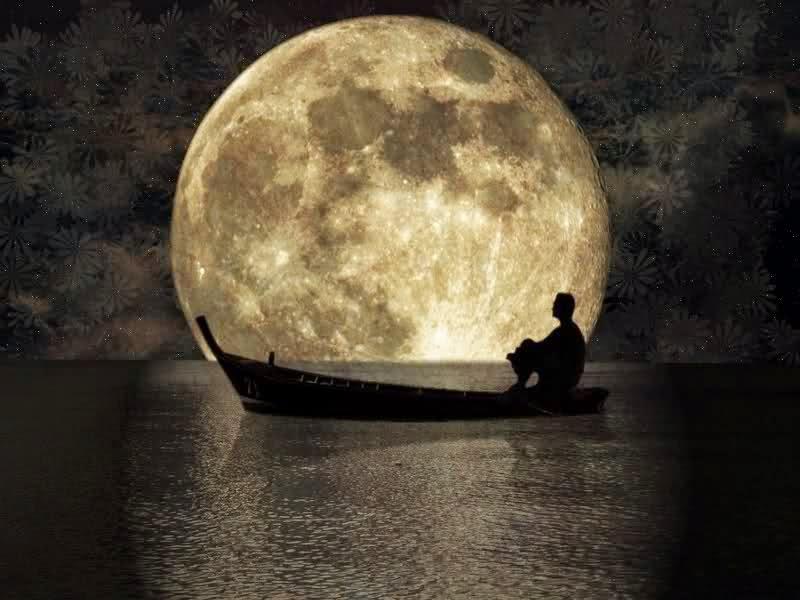 Frases de amor, sol, luna, estrellas.