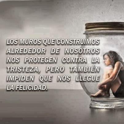 Frases de reflexión, muros, construimos, alrededor, protegen, tristeza, impiden, felicidad.
