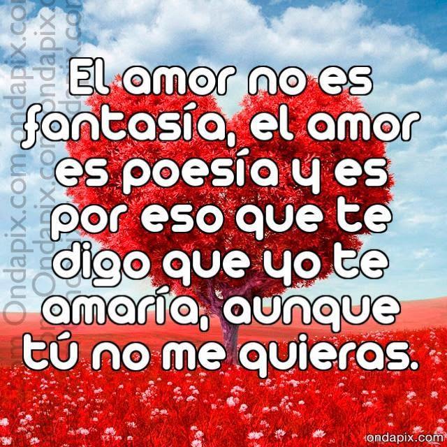 Frases de amor, amor, fantasía, poesía, amaría, quieras.